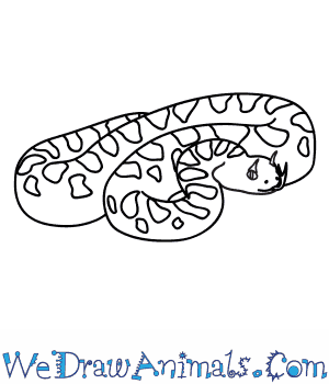 How to Draw a Desert Horned Viper in 7 Easy Steps