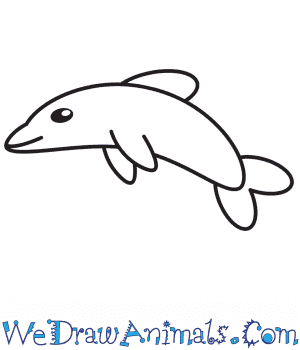 How to Draw a Dolphin For Kids in 6 Easy Steps