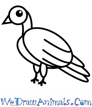 How to Draw a Dove For Kids in 9 Easy Steps