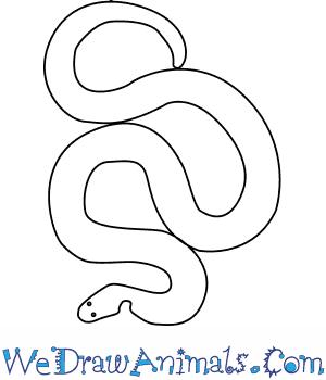How to Draw a Dumerils Kukri Snake in 5 Easy Steps
