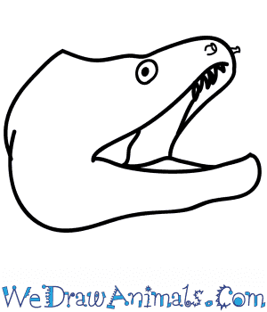 How to Draw an Eel Face in 5 Easy Steps