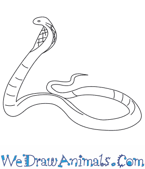 how to draw an egyptian cobra