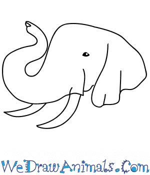 How to Draw an Elephant Face in 7 Easy Steps