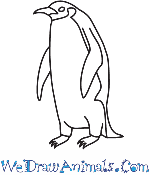 How to Draw an Emperor Penguin in 9 Easy Steps
