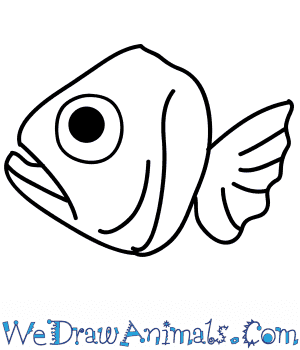 How to Draw a Fish Face in 7 Easy Steps