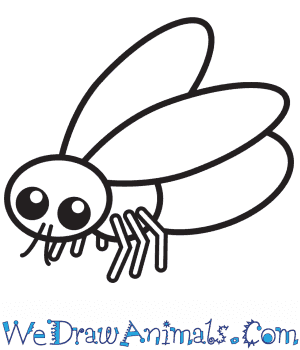 How to Draw a Fly For Kids in 7 Easy Steps