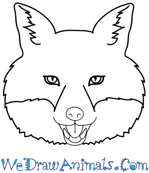 How to Draw a Fox Face in 9 Easy Steps