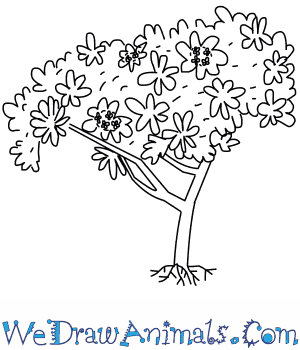How to Draw a Frangipani Tree in 5 Easy Steps