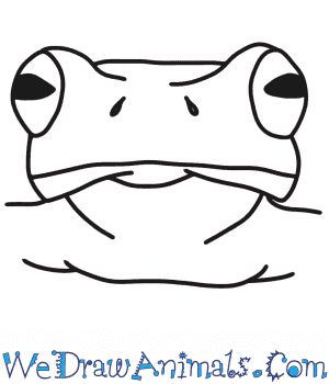 How to Draw a Frog Head in 6 Easy Steps
