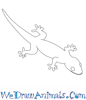 How To Draw A Gecko