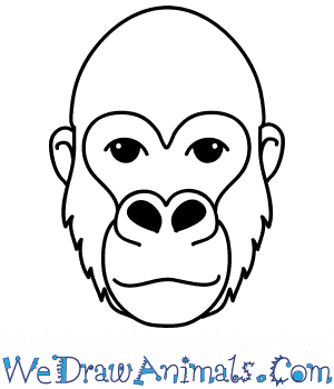 How to Draw a Gorilla Face in 8 Easy Steps
