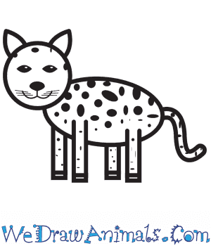 How to Draw a Jaguar For Kids in 9 Easy Steps