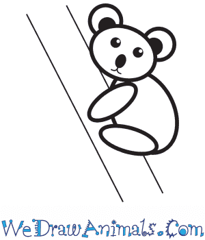 How to Draw a Koala For Kids in 9 Easy Steps
