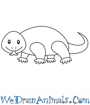 How to Draw a Komodo Dragon For Kids in 6 Easy Steps