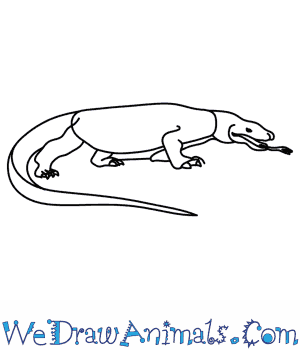 How to Draw a Komodo Dragon in 8 Easy Steps