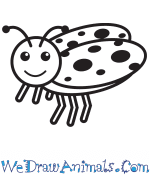 How to Draw a Ladybug For Kids in 9 Easy Steps