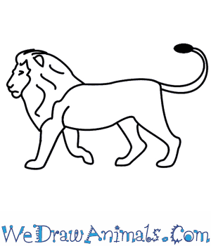 Easy Lion Outline Drawing / Lion face outlined front svg.