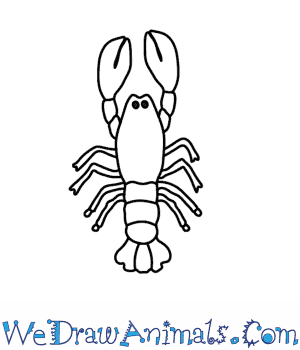 How to Draw a Lobster in 6 Easy Steps