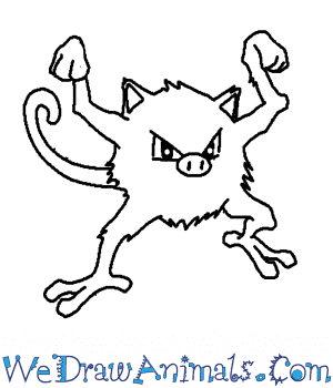 How to Draw  Mankey in 6 Easy Steps