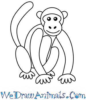 How To Draw A Simple Monkey For Kids