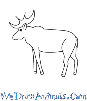 How to Draw a Moose in 10 Easy Steps