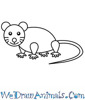 How To Draw A Simple Mouse For Kids