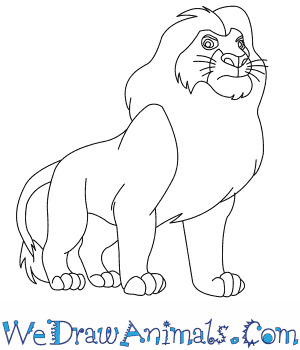 How To Draw Mufasa From The Lion King Drawing King