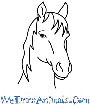 How to Draw a Mustang Horse Head in 10 Easy Steps