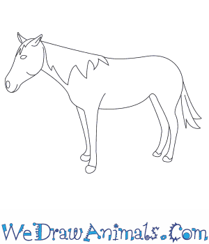 How to Draw a Mustang Horse in 8 Easy Steps