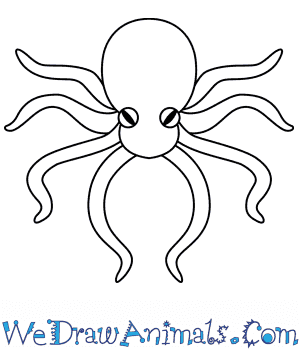 How to Draw an Octopus For Kids in 3 Easy Steps