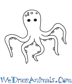 How to Draw an Octopus in 5 Easy Steps