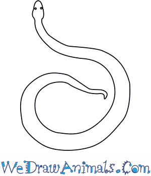 How to Draw an Orlovs Viper in 5 Easy Steps