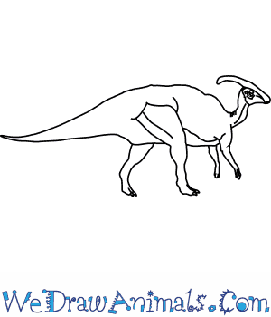 How to Draw a Parasaurolophus in 6 Easy Steps