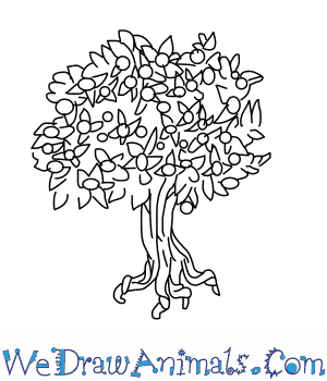 How to Draw a Pecan Tree in 5 Easy Steps