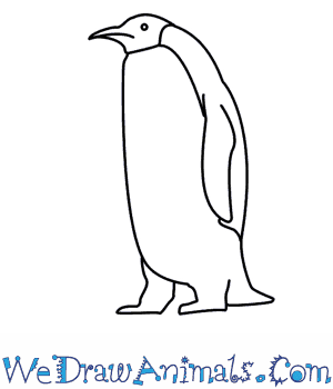 How to Draw a Penguin in 6 Easy Steps