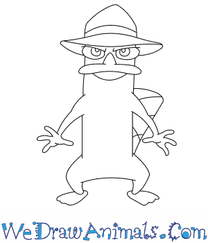 How to Draw  Perry The Platypus in 8 Easy Steps