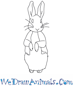 How to Draw  Peter Rabbit in 7 Easy Steps