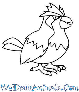 How to Draw  Pidgey in 7 Easy Steps