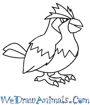 how to draw pidgey pokemon