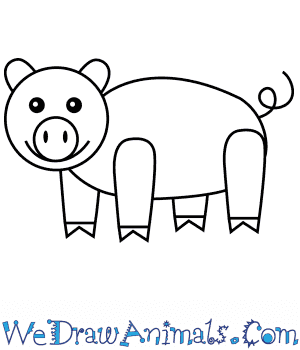 How to Draw a Pig For Kids in 6 Easy Steps