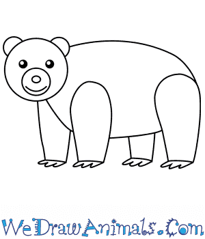 How to Draw a Polar Bear For Kids in 6 Easy Steps