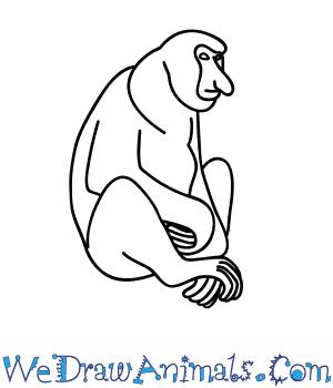 How to Draw a Proboscis Monkey in 8 Easy Steps
