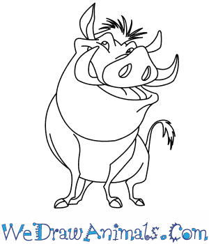 How to Draw  Pumbaa From The Lion King in 8 Easy Steps