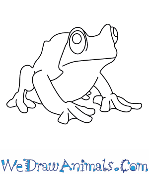 How to Draw a Rabbs Fringe Limbed Treefrog in 9 Easy Steps