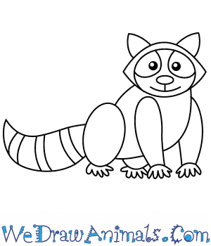 How to Draw a Raccoon For Kids in 6 Easy Steps