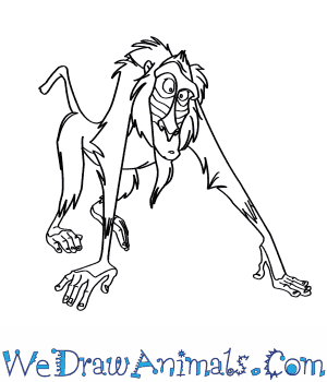 How to Draw  Rafiki From The Lion King in 6 Easy Steps