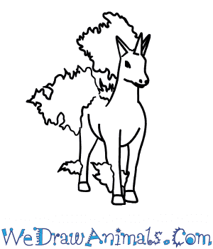 How to Draw  Rapidash in 7 Easy Steps