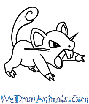 How to Draw  Rattata in 7 Easy Steps