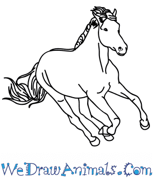 How to Draw a Realistic Mustang Horse in 8 Easy Steps