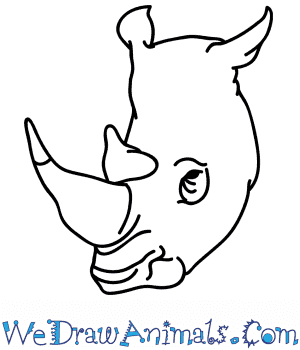How to Draw a Rhino Face in 5 Easy Steps